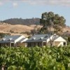Barossa Vineyard Cottages
