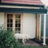 Tarooki Bed & Breakfast
